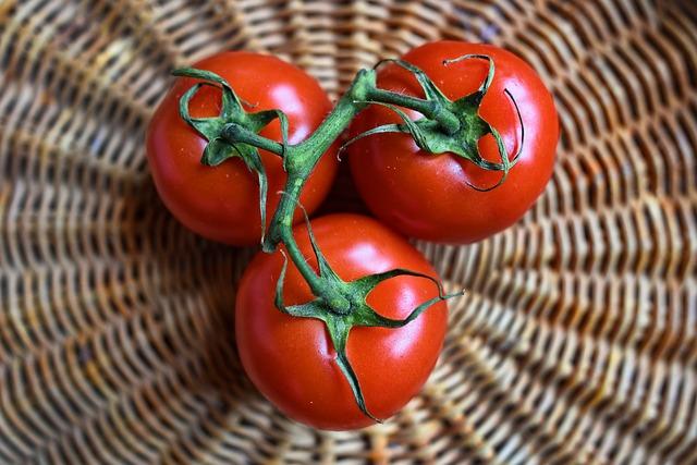 tři rajčata